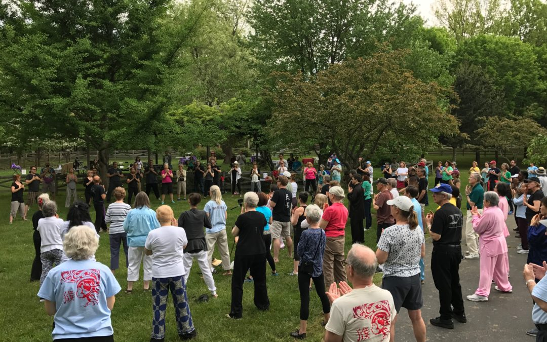 Postponed: World Tai Chi and Qigong Day